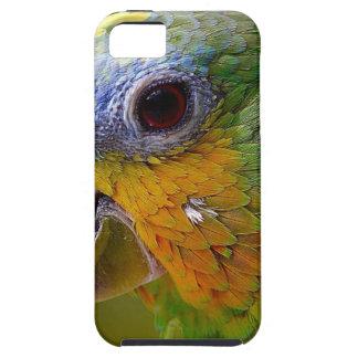 Parrot Amazon Animals Bird Green Exotic Bird iPhone 5 Case