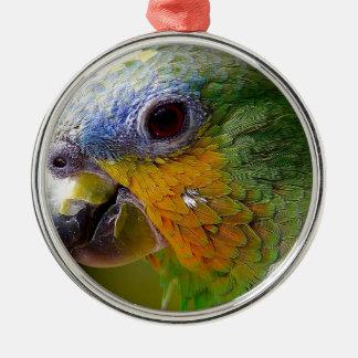 Parrot Amazon Animals Bird Green Exotic Bird Metal Ornament