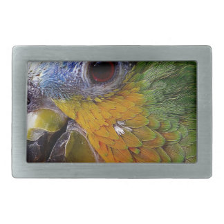 Parrot Amazon Animals Bird Green Exotic Bird Rectangular Belt Buckle