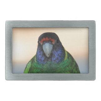parrot belt buckles