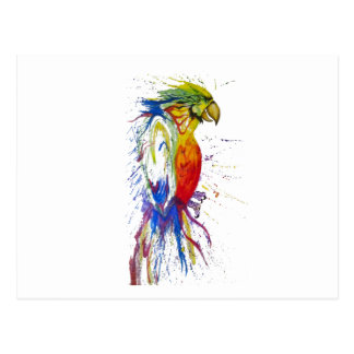 Parrot Bird Animal Postcard