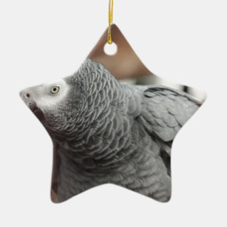 Parrot Ceramic Ornament