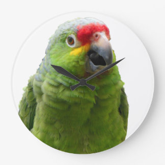 Parrot Green and Red Wallclock