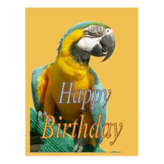 Parrot Happy Birthday Customizable Postcard