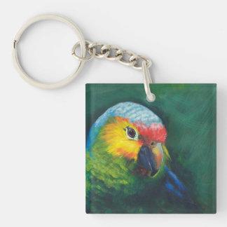 Parrot key chain