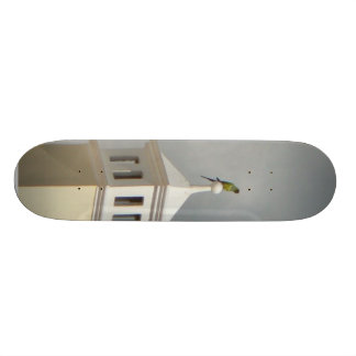Parrot On Top Of Building Skate Board Decks