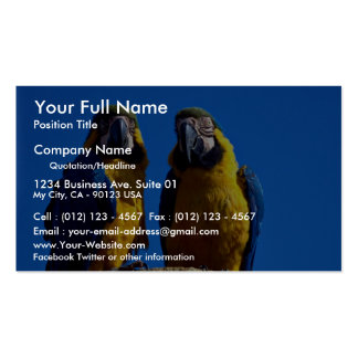 Parrot pair business card template
