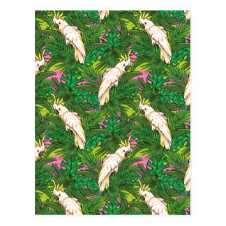Parrot Pattern With Palm Leaves Postcard