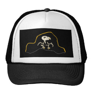 Parrot Pirate Hat For Parrot Pirates To Wear