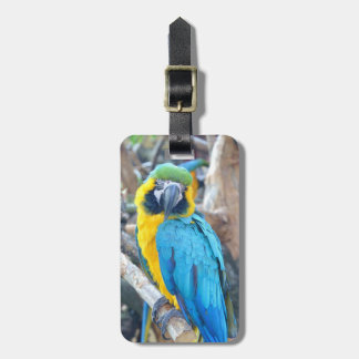 Parrot Portrait Luggage Tag
