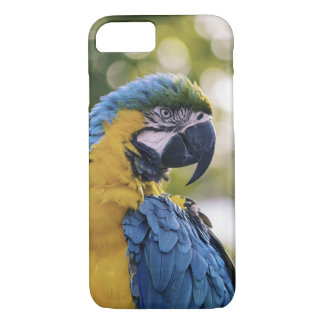 Parrot Profile Portrait Photograph iPhone 8/7 Case