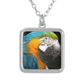 PARROT SILVER PLATED NECKLACE