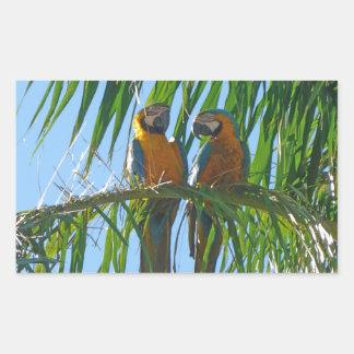 Parrots- Blue and Gold Macaws Rectangular Sticker