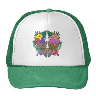 Parrots Cap