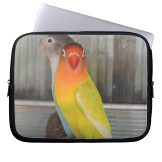 Parrots Laptop Computer Sleeve