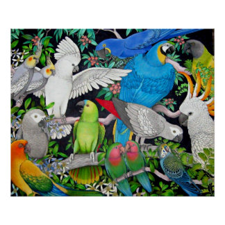 Parrots of the World Poster