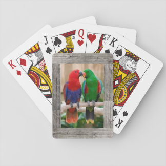 Parrots on a deck of playing cards