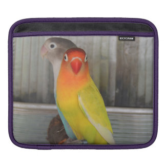 Parrots Sleeves For iPads