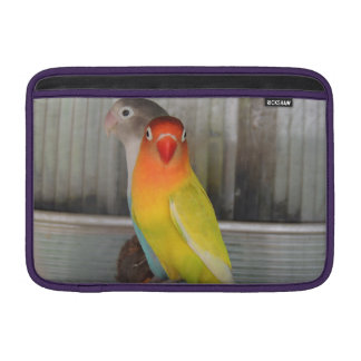Parrots Sleeves For MacBook Air
