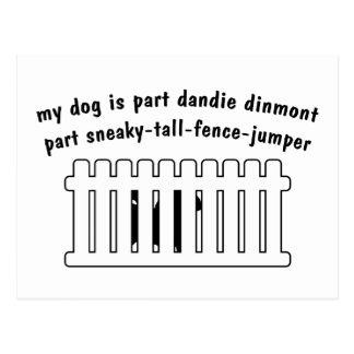 Part Dandie Dinmont Part Fence-Jumper Postcard