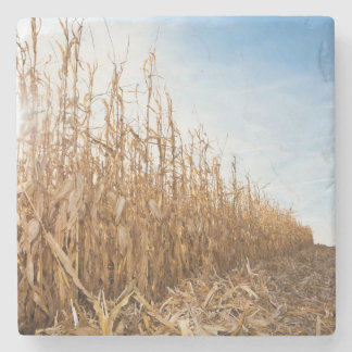 Partly Harvested Corn Field Stone Coaster