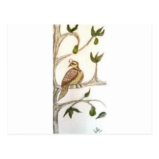 Partridge in a Green Pear Tree Postcard