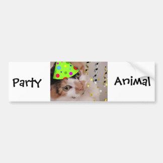 Party Animal/Calico Cat Bumper Sticker