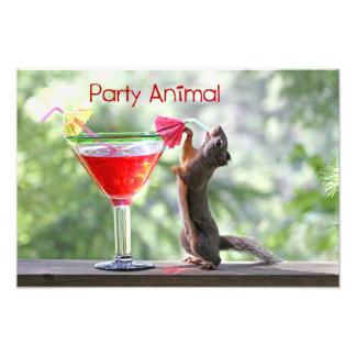 Party Animal Squirrel Photo