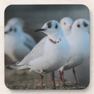 Party Gull Beverage Coasters
