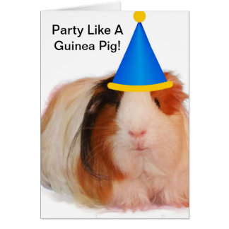 Party Like A Guinea Pig cards