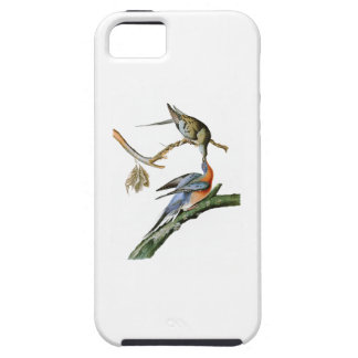 Passenger Pigeon John Audubon Birds of America Tough iPhone 5 Case