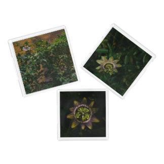 passiflora acrylic tray