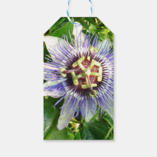 Passiflora Against Green Foliage In A Garden Gift Tags