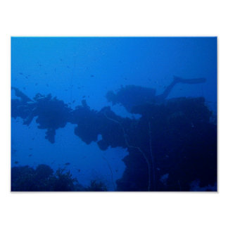 Passing Diver Poster
