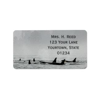 Passing Whales Return Address Label