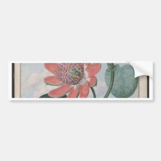 Passion Flower Bumper Sticker