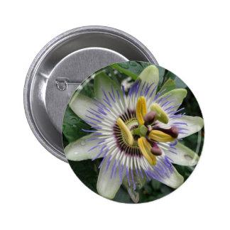 Passion Flower Button