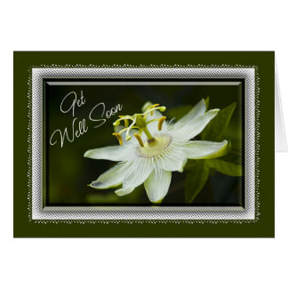 Passion Flower Get Well Card