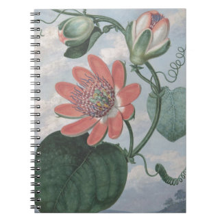 Passion Flower Notebooks