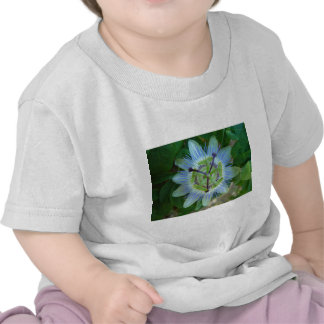 Passion Flower Tee Shirt