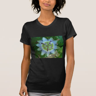 Passion Flower Shirts
