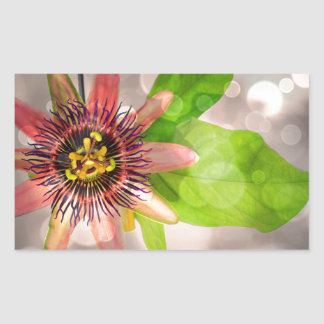 Passion Fruit Flower Rectangular Sticker