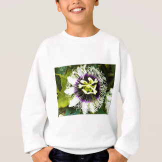 passion-fruit sweatshirt