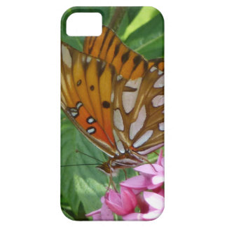 Passion Vine Butterfly iPhone 5 Cases