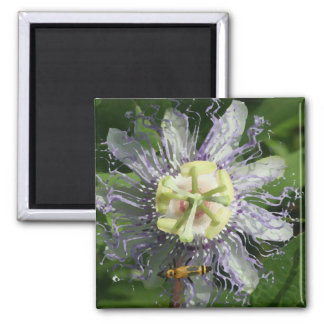 Passionflower Magnet