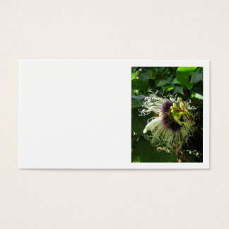 Passionfruit Blossom Business Card