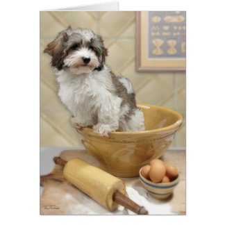 Pasta Pup, Penne the Havanese Puppy Card
