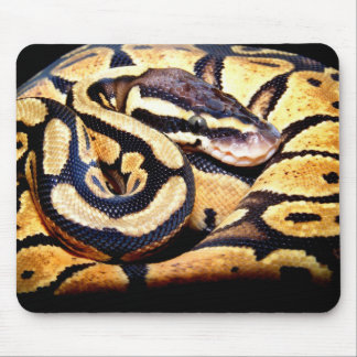 Pastel Ball Mouse Pad