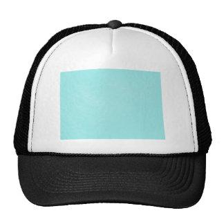 Pastel Blue Leather Look Cap