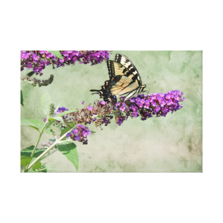 Pastel Butterfly Canvas Print